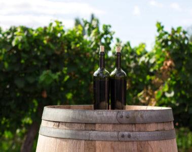 Schweizer Weinfestival Planschen
